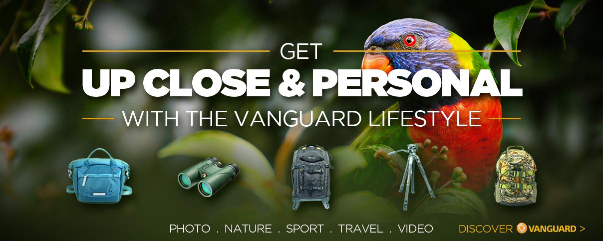 Vanguard_Dsektop banner